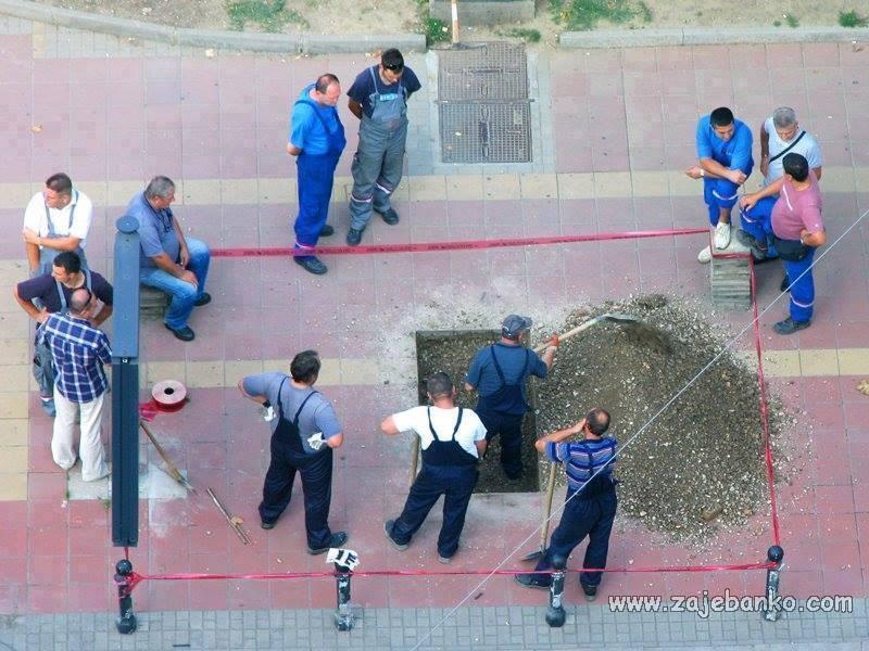crnogorci na poslu