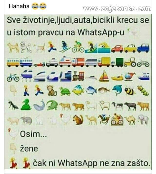 whatsapp ikonice