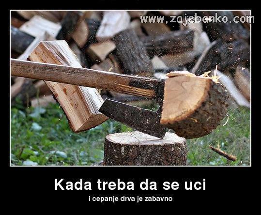 sve je zabavno kad treba da se uči, pa i cijepanje drva