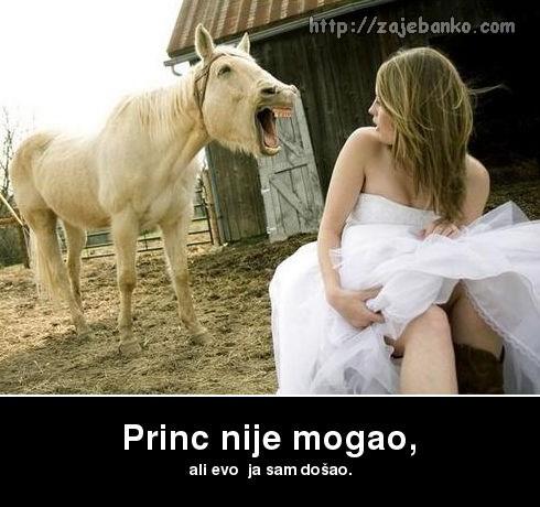 kad ti umjesto princa dođe samo konj