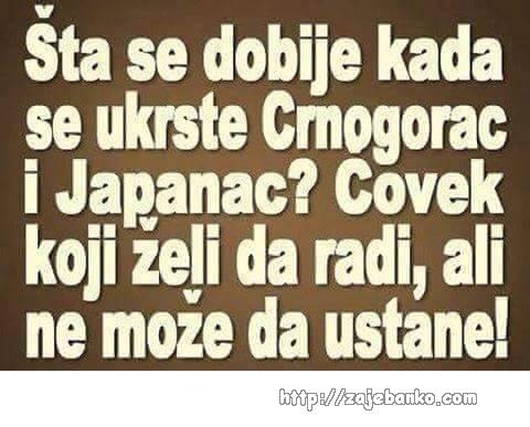 Japanac i Crnogorac
