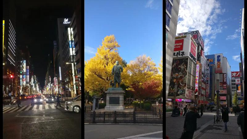 Tokyo streets and the last samurai statue (Saigo Takamori)