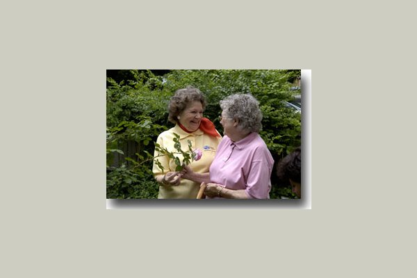 Comfort Keepers Homecare 7308