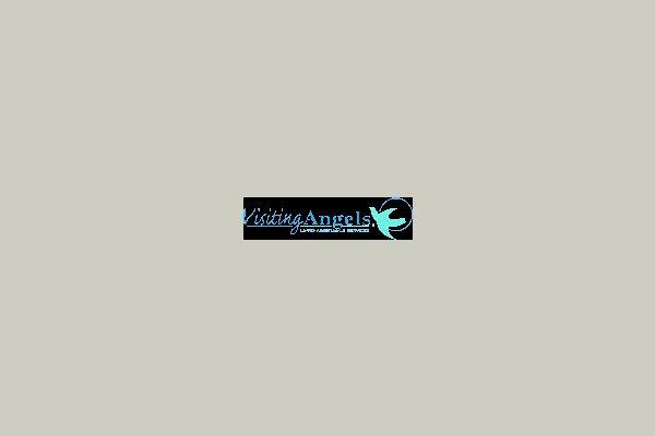 Visiting Angels 40862
