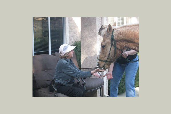 Prestige Assisted Living at Chico Horse week in Expressions 013
