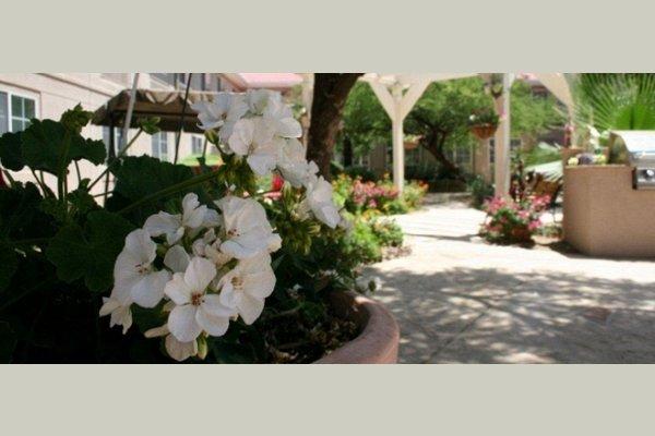 The Gardens of Sun City thumb_img_7996