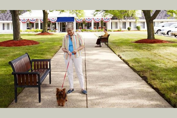 American House Dearborn Heights Senior Living 88706