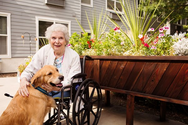 Willow Park is a pet friendly community. Whether it be your own pooch or kitty, or our pet therapy animals that visit, there is no shortage on love and admiration from animals in our community.