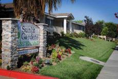 Sunlit Gardens