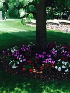 Pine Hill Retirement Home