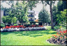 Sycamores Terrace Senior Apartments