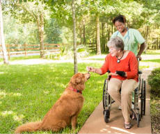 Emerald Choice Homecare