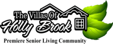 Villas of Holly Brook Bradenton Cove/Comfort Cove (Opening Summer 2019)