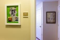 Artis of Wilmette (Opening Spring 2021)