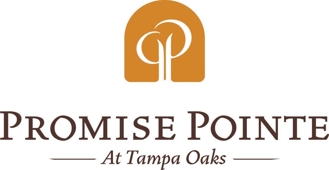Photo 1 of Promise Pointe at Tampa Oaks