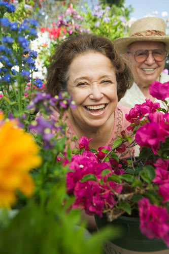 Love in Assisted Living