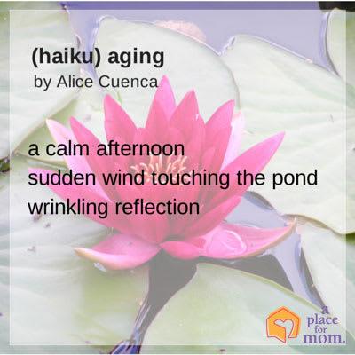 Haiku: Aging