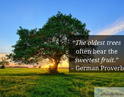 The Oldest Trees Bear the Sweetest Fruit