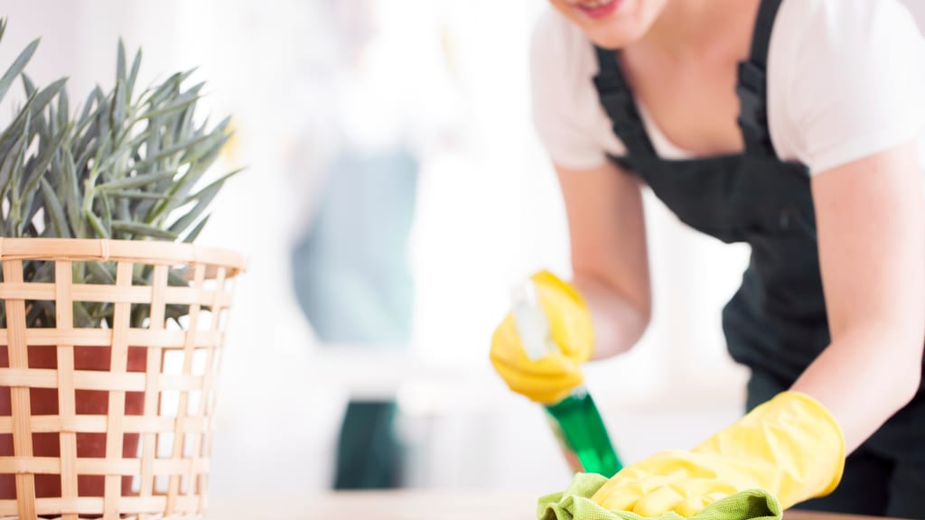 A woman sprays a counter with cleaning solution while working on vacation home cleaning.