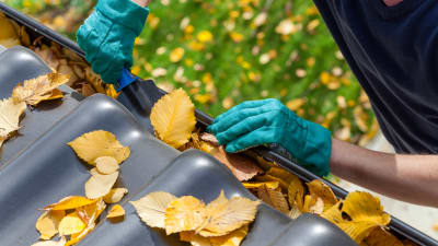 gutter cleaning services for fall