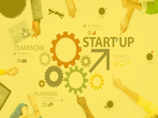 startup business services
