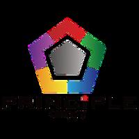 Principle Co Ltd.