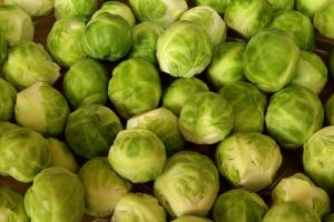 Brussels sprouts-coomon vegetable