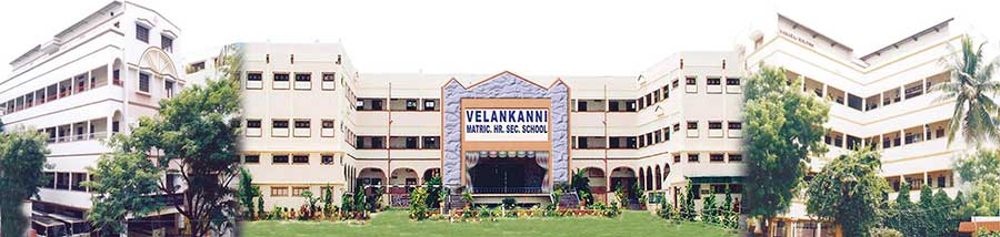 Velankanni-Matriculation-Higher-Secondary-School_feedbacks and reviews
