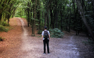 Which way to go? Distinction between Coaching and Consulting