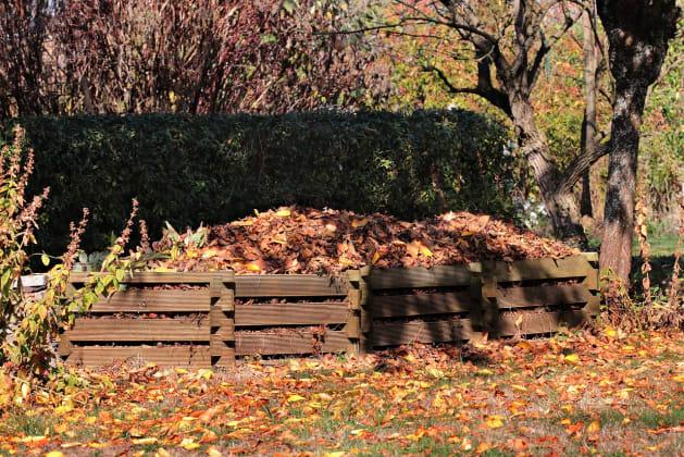 Kompost: was darf rein