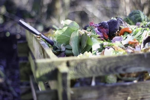 Thermo-Komposter kaufen