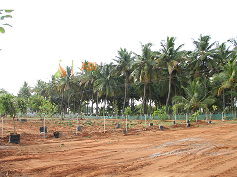 ready to occupy gated community villas in vadavalli