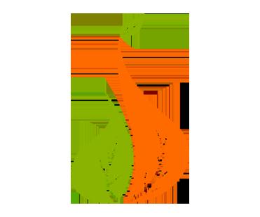 Abi Infrastructures Logo