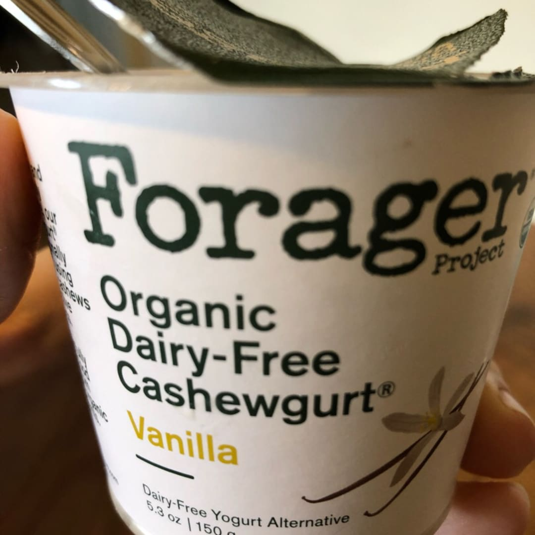 photo of Forager Project Organic Dairy-free Vanilla Cashewmilk Yogurt shared by @s1224 on  20 Jul 2019 - review