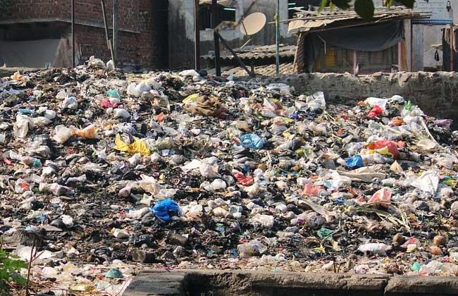 Uma década perdida para o meio ambiente