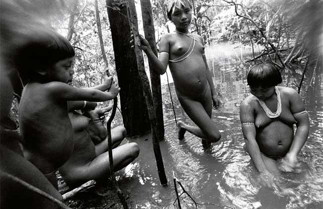Expressão Yanomami