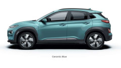 Bilde av KONA electric