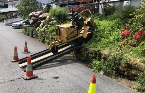 Illus: Sikring av trær i Bergen