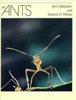 Book Cover for The Ants