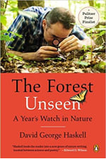 Book Cover for The Forest Unseen