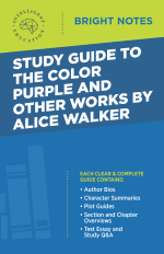 Bright Notes Cover for The Color Purple by Alice Walker