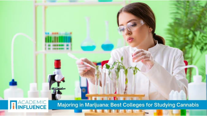 majoring-in-marijuana