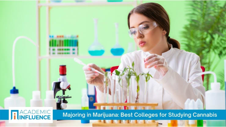 Majoring in Marijuana: Best Colleges for Studying Cannabis