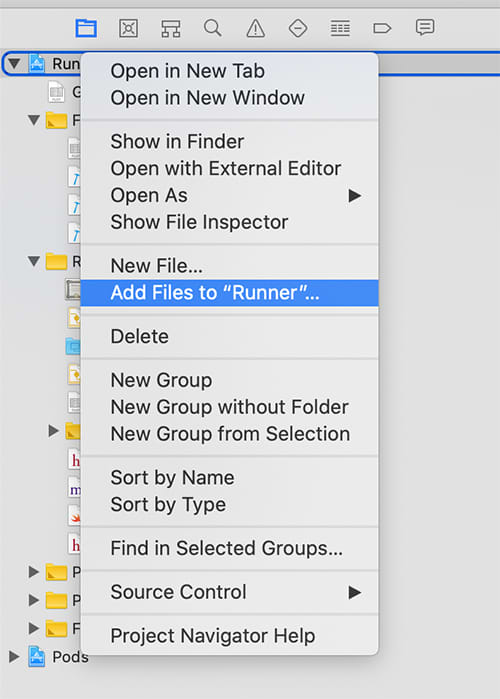 Add the config file to your Runner project via Add Files to