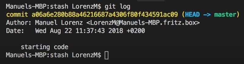 the git log command