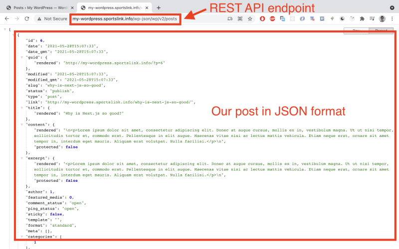 Sending a Http GET request to the /posts API endpoint should now yield the new post.