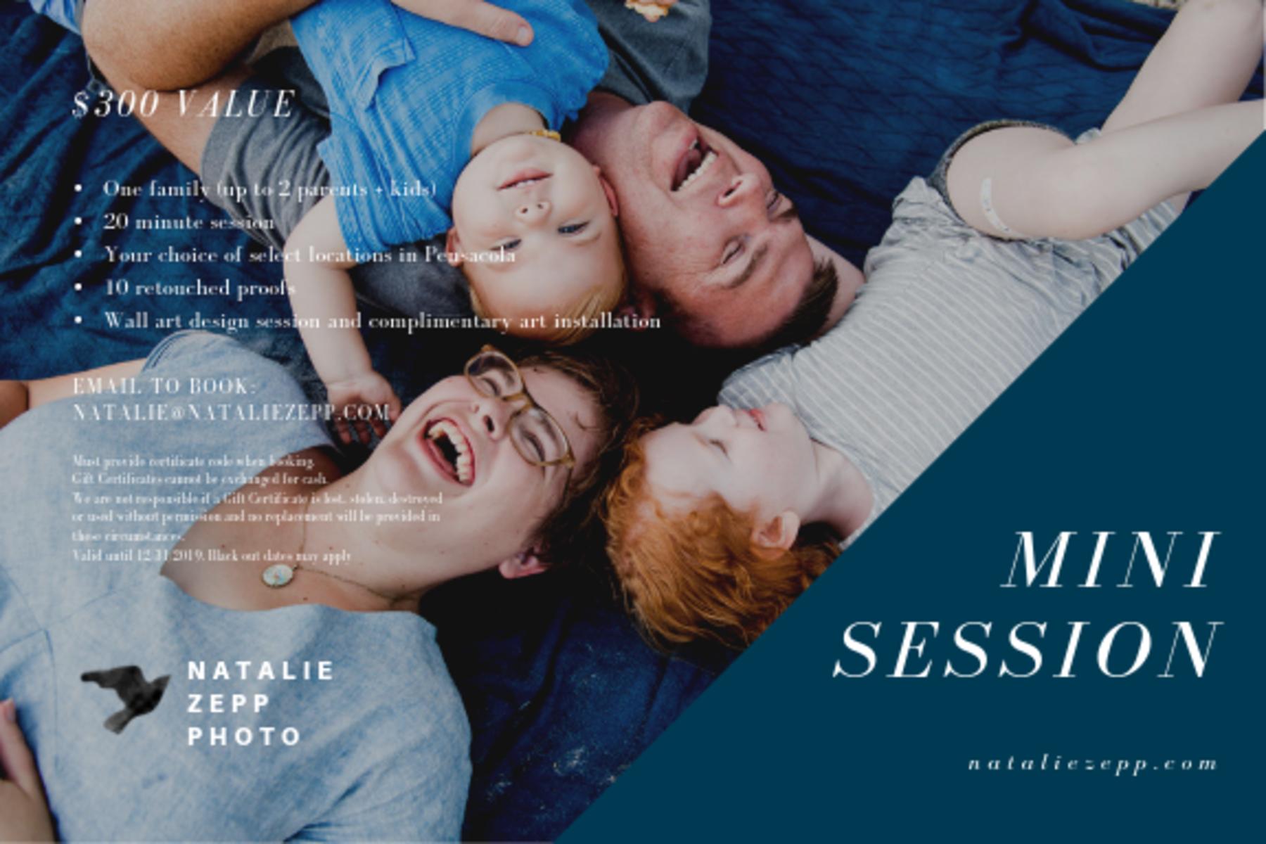 Auction Page | Mini-photo session