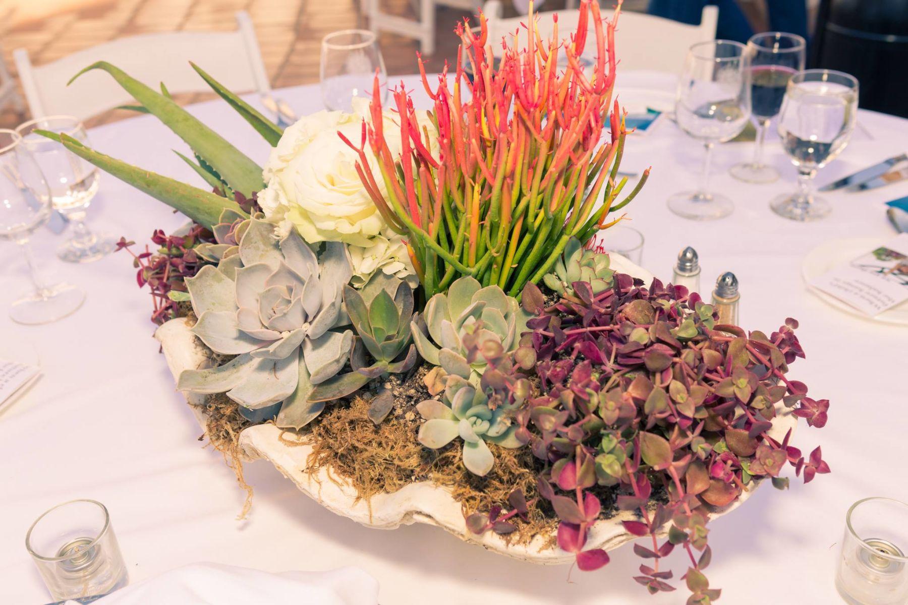 Auction Page Succulent Garden Centerpiece