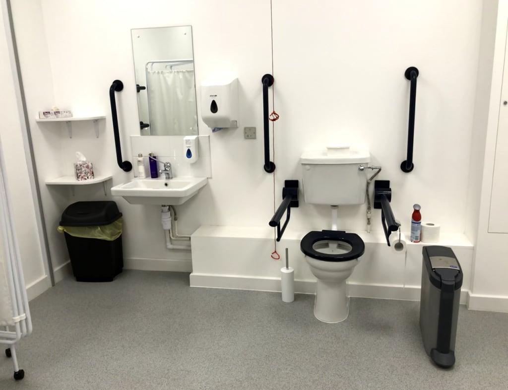 Peninsular toilet with grab rails