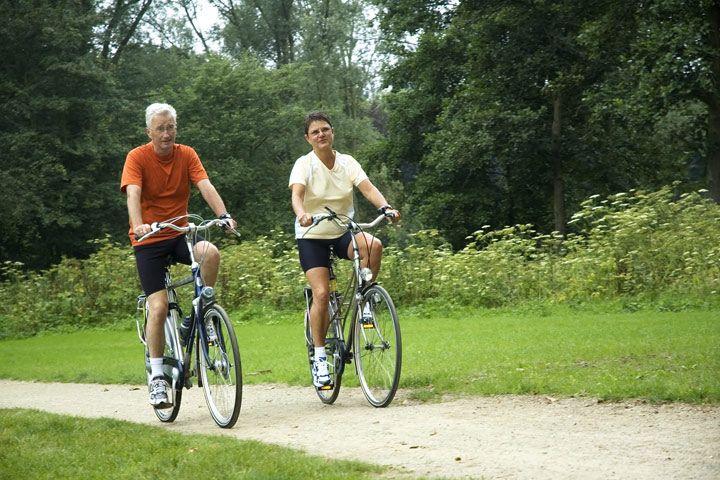 Hampton Court Bike Tour for 2